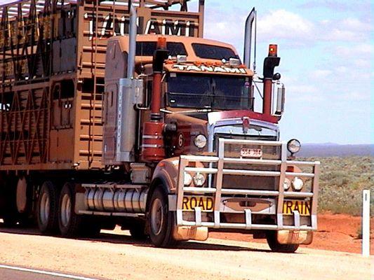noch'n Truck