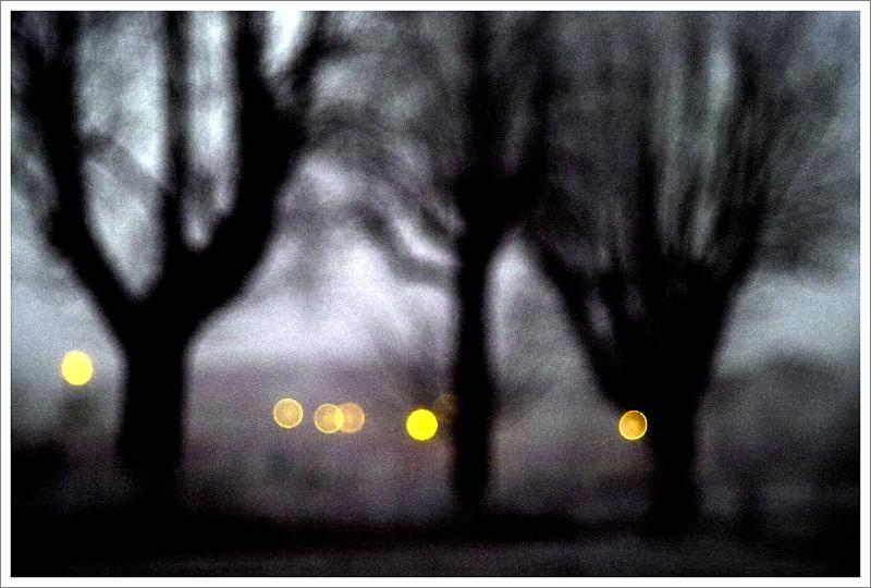 Nocturne / a