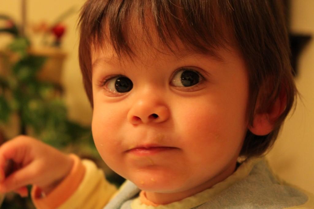 Noé, 1 an et demi (2)