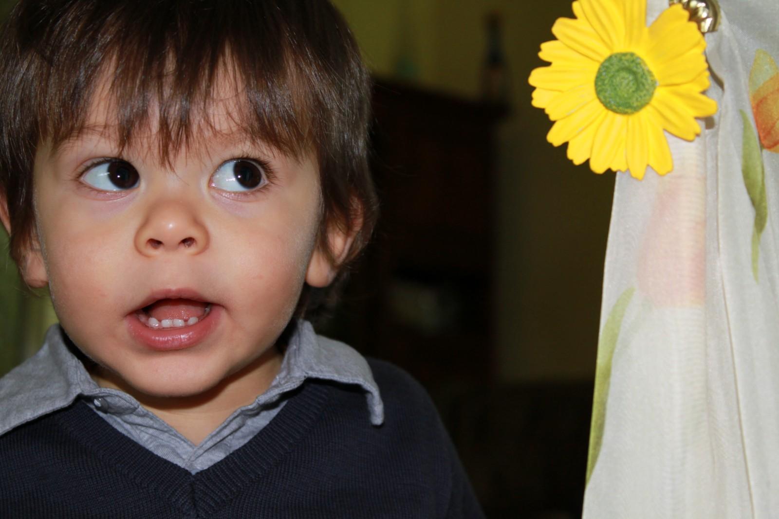 Noé et la fleur jaune