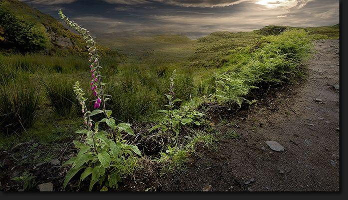 Nördliches Highland - Scotland