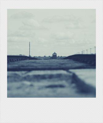 NON DIMENTICO -Auschwitz-