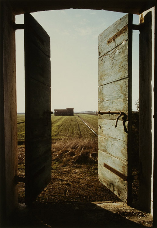 Non è mai tardo il canto che si leva pur da muri cadenti e reietti