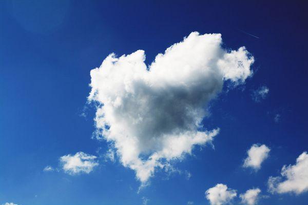 Non volare via amore...