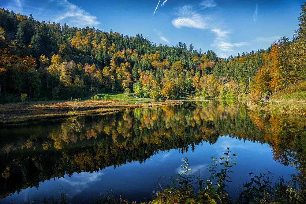 Nonnenmattenweiher im Herbst 04