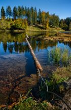 Nonnenmattenweiher im Herbst