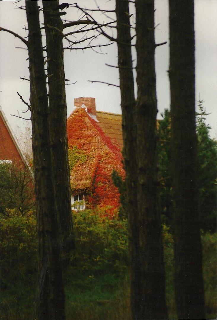 Norderneyer Herbst
