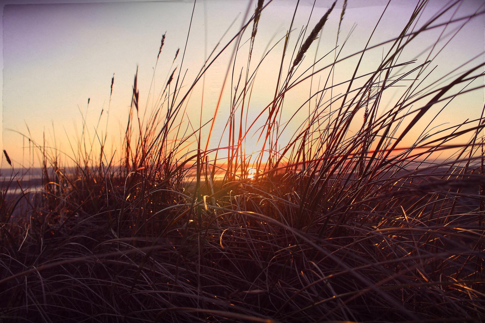 Nordischer Sonneuntergang