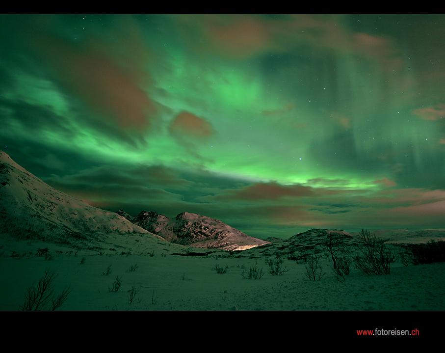Nordlicht auf unserer Norwegen Polarlichtreise IV