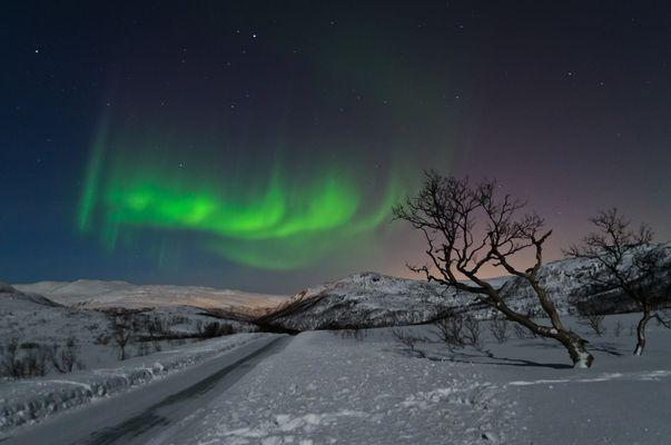 Nordlicht bei Tromsö,Norwegen