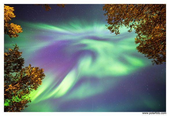 Nordlicht corona