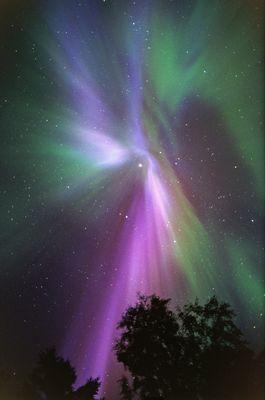 Nordlicht-Korona in Blau-Violett-Grün