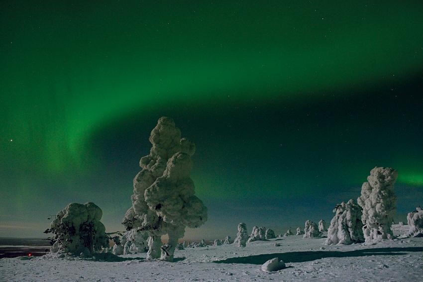 Nordlichter in Finnland-Lappland, Februar 2013