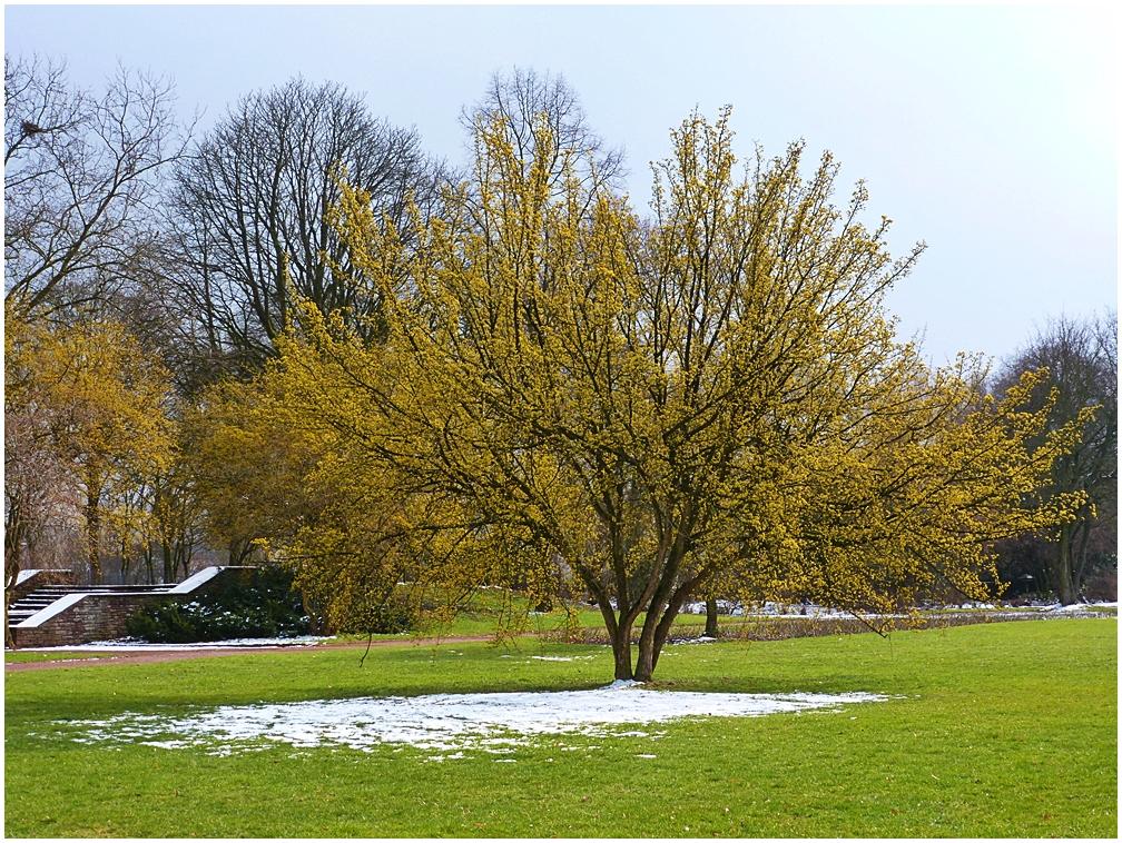 Nordpark Düsseldorf (3)