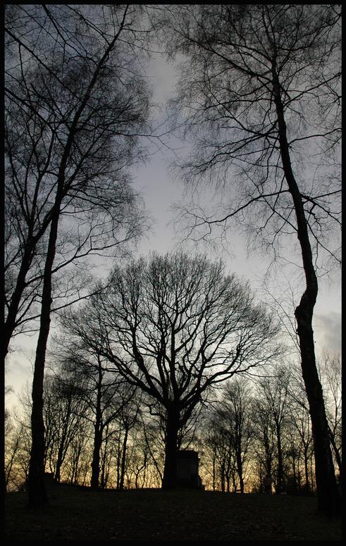 Nordpark - zwischen Tag und Nacht2