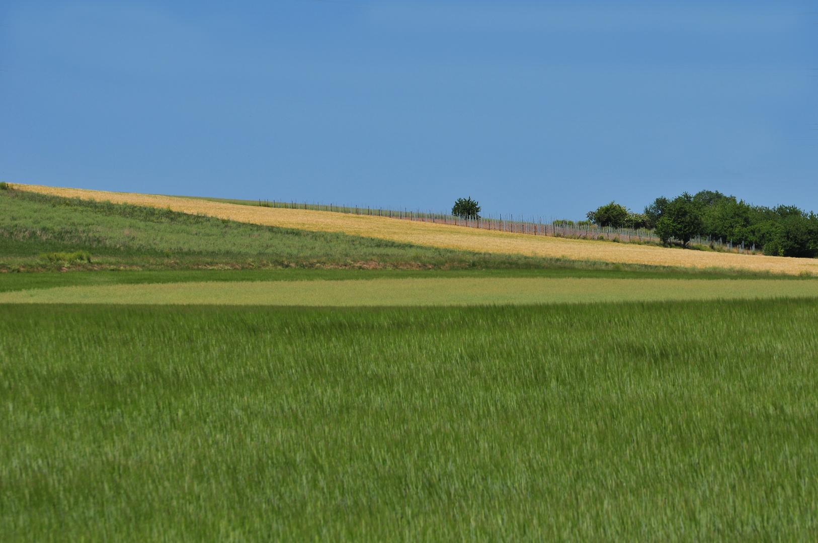 Nordpfälzer Landchaft