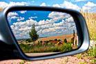 Nordpfälzer Landschaft im Spiegel