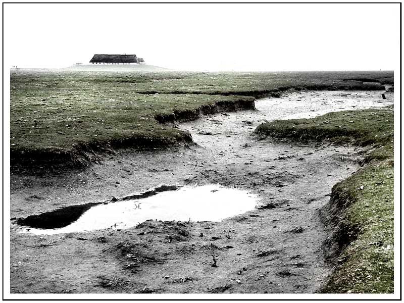 Nordsee #4: Hamburger Hallig
