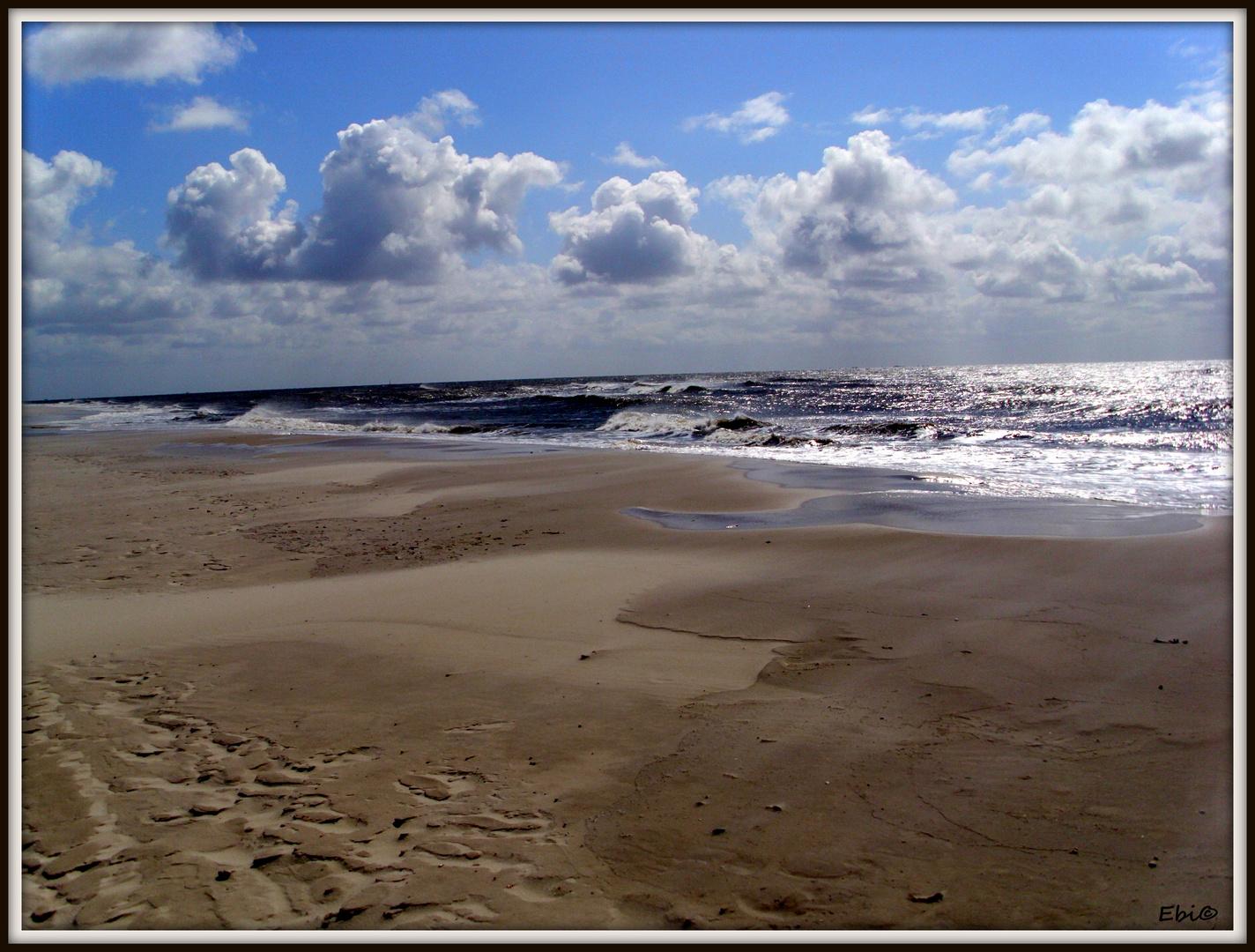 Nordsee - Amrum