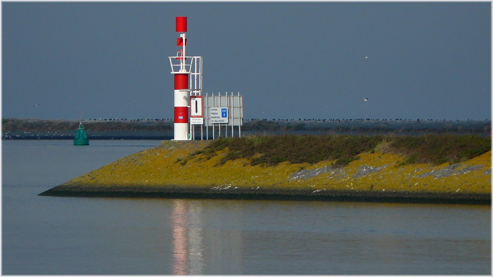 *** Nordsee ***