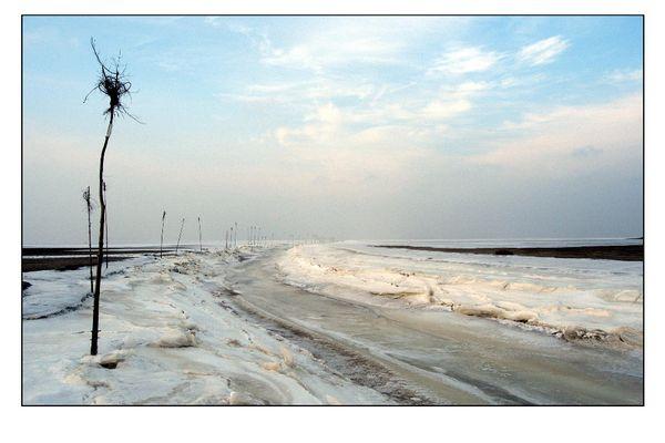 Nordsee-Winter