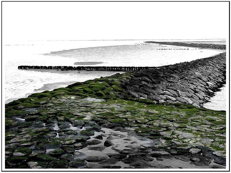 Nordsee#6: Buhnen