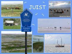 Nordseeinsel Juist (2)