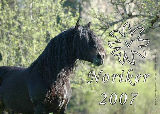 Noriker Kalender 2007