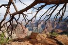 North Rim - Grand Canyon