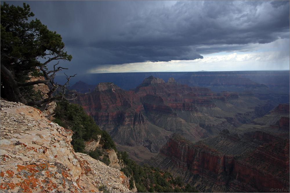 North Rim Thunderstorm
