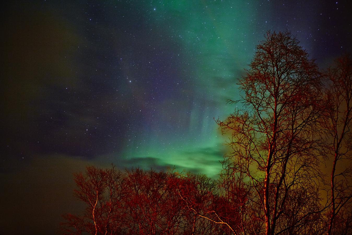 Northern Light, Tromsø North Norway