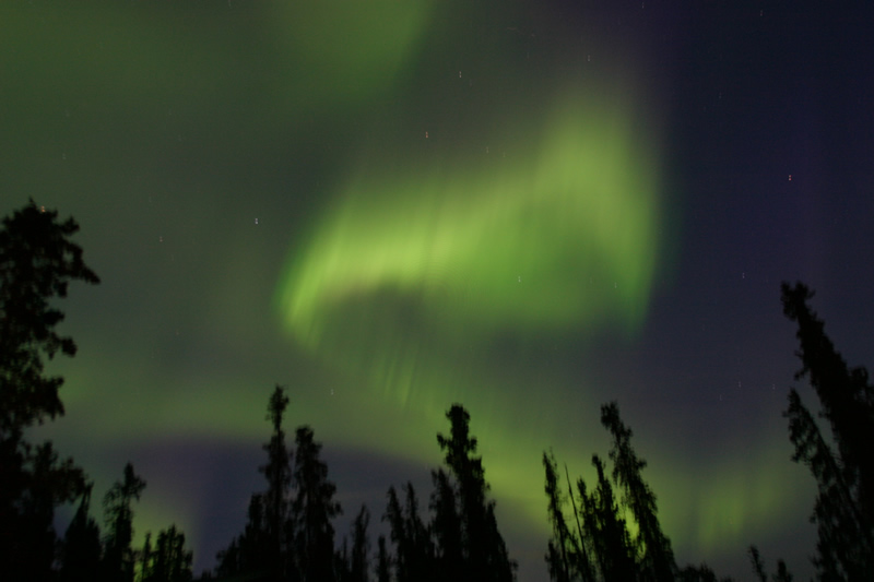 Northern Lights über dem Yukon