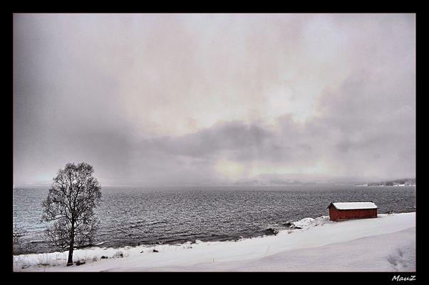 ... Norvegian's colours 2....