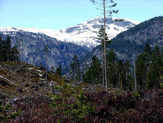 Norwegen 2002