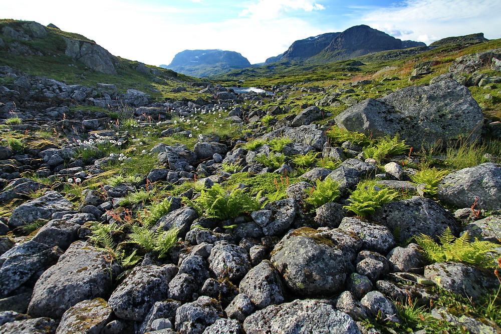 Norwegen am See Ulevatnet