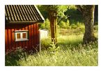 Norwegen: Nedre Bjoerkos