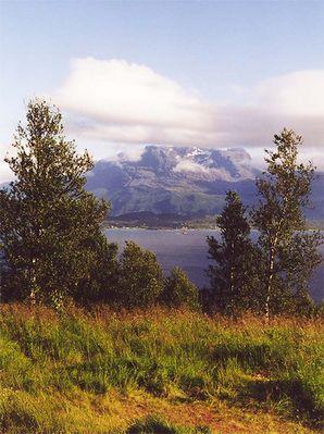 Norwegen - wo ist der Elch ?
