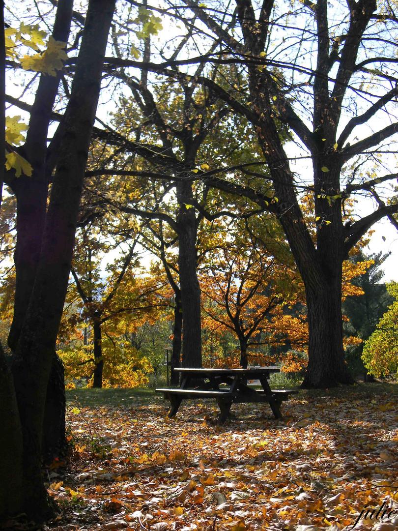 nostagie de l automne