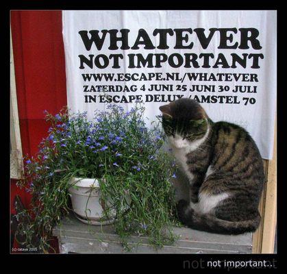 Not Important - Nicht so wichtig...