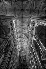 ~ Notre-Dame d'Amiens  ~