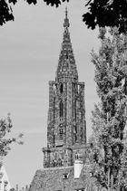 Notre Dame de Strasbourg - 01