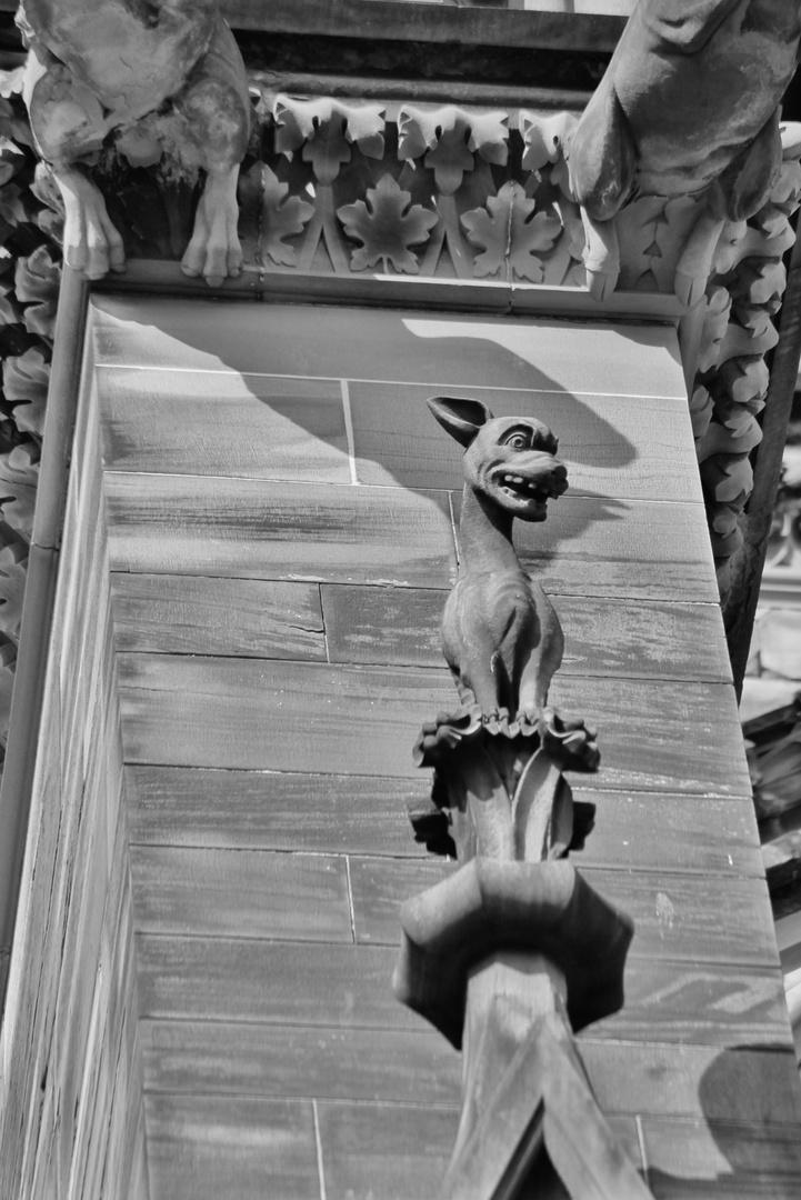 Notre Dame de Strasbourg - 18