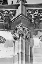 Notre Dame de Strasbourg - 20