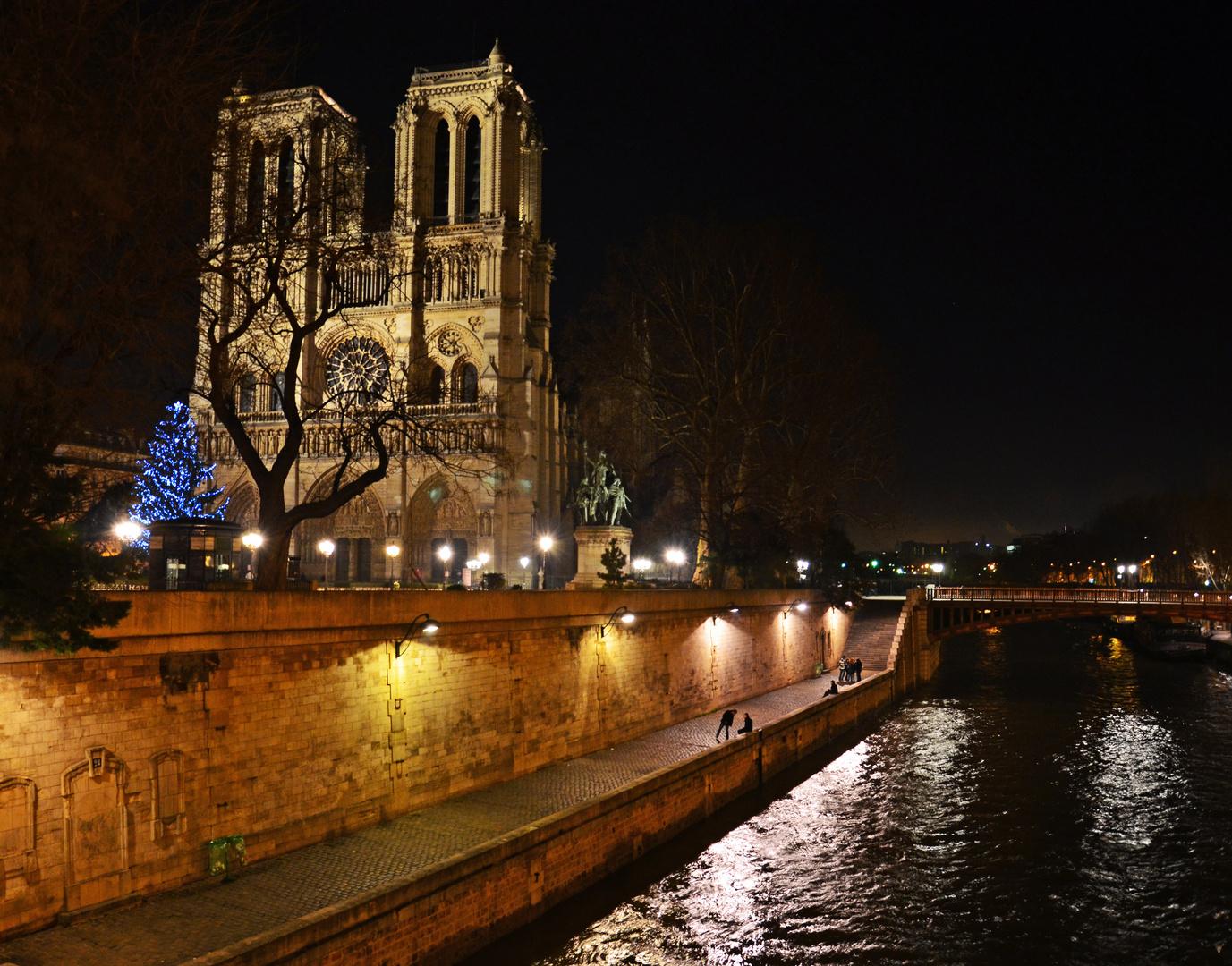 Notre Dame et quai de Seine