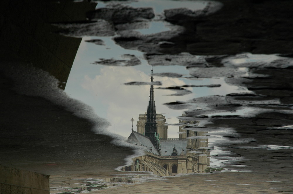 Notre Dame in a puddle