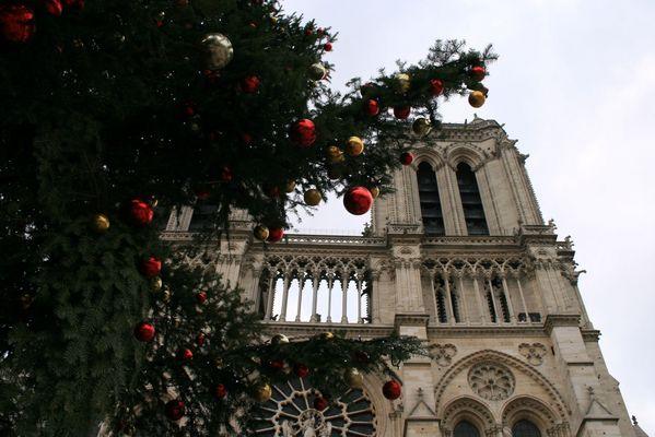 Notre-Dame in Weihnachtsstimmung....