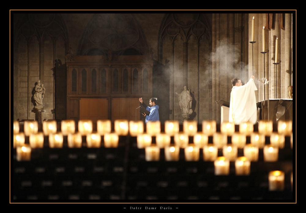 - Notre Dame Paris -