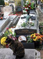 """Notre """"Piaf"""" gardée par un chat ! (Cimetière du Père Lachaise)"""