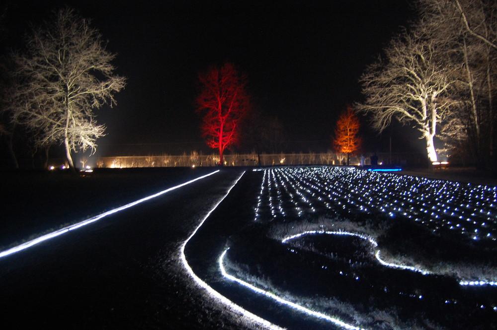 notturno al parco del castello