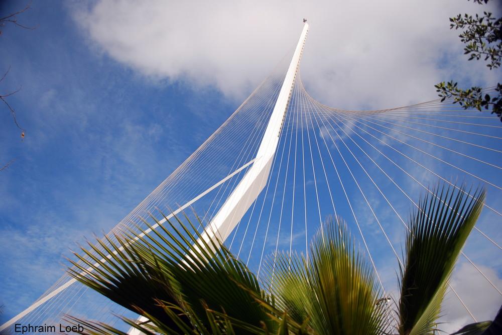 Nouveau pont suspendu de Jerusalem